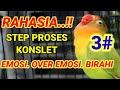 Part  Penggacoran Lovebird Proses Cetak Konslet Cara Jitu Pancingan Nyaut Ngekek Panjang  Mp3 - Mp4 Download