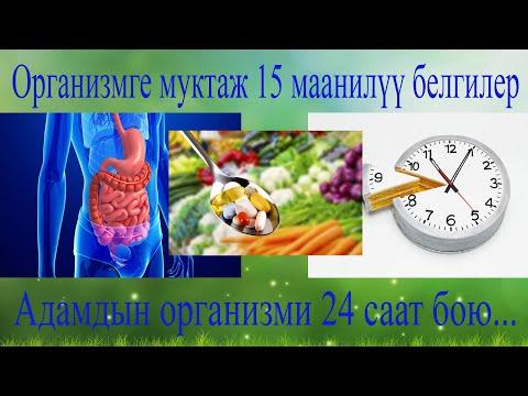 Организмге муктаж 15 белги жана 24 саат бою организм эмне аткарат