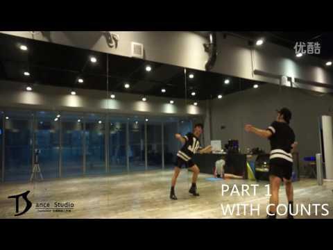 Tiffany I Just Wanna Dance舞蹈镜面分解教学【TS DANCE】 Dance Tutorial