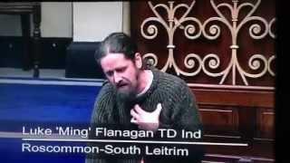 CONFLICT/FIGHT in Irish Parliament - Luke