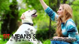 Sit Means Sit DogTraining Madison WI