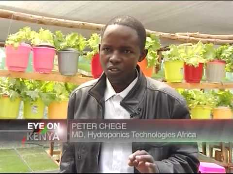 Entrepreneur: Hydroponics farming technology