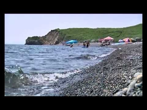 Пляж Черные пески в Зарубино