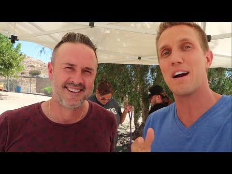 BAKE SALE W/ DAVID ARQUETTE