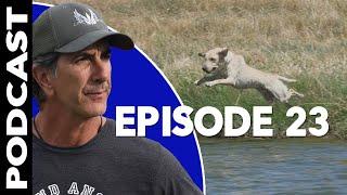 Labrador Retriever Nationals 2019 Podcast  Dog Training Video Podcast Episode 23