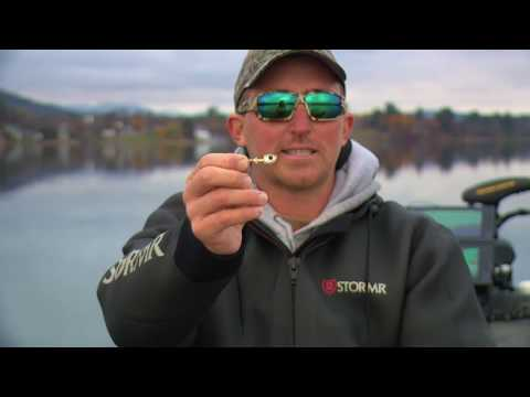 ❄ Finesse Swimbait Bass Fishing Secrets For Winter Cold ❄