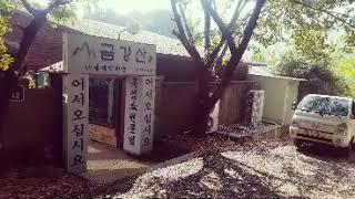 인천 계산동 맛집 금강산 식당 염소 전문점 당일도축 건…