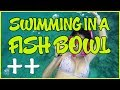 Swimming in a fish bowl - SUMMER VLOGS 2014