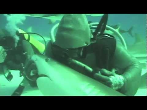 Shark Cuddling, Wedding Diving and Other Deep Sea Adventures (VOA On Assignment Jan. 25)