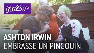 5 Seconds Of Summer : Ashton Irwin embrasse un pingouin