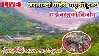 पहिरो गएको डरलाग्दो दृश्य    हेर्दा हेर्दै पुरियो गाई बस्तुहरु    Landslide scene in Nepal