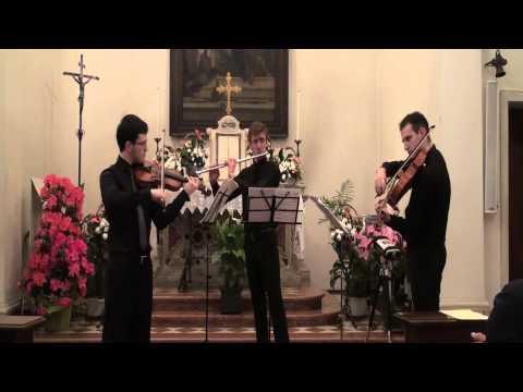 Ludwig van Beethoven Serenade in D major for flute, violin and viola Op.25