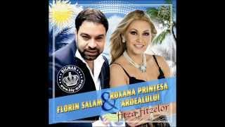 Florin Salam si Roxana - Am acasa un tablou (Audio oficial)