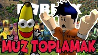 MAYMUN OLDUK MUZ TOPLADIK !   Roblox Banana Simulator