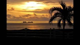 Costa Rica Beach Front Condo - Playa Potrero