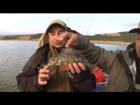 рыбалка на тайменя с анатолием полотно