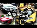 Most Exotic Supercars! McLaren, Bugatti, Lamborghini, Ferrari & more
