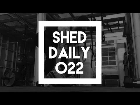 Beginner Full Body Strength Circuit   Shed Daily 022