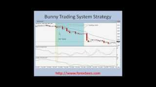 Forex Bunny Trading System