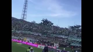 MEDELLIN, COLOMBIA - Atletico Nacional fans 2