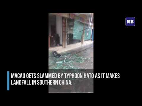 Three dead in Macau as Typhoon Hato smashes casino enclave