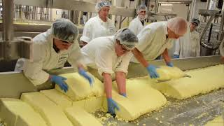 Big Y Cheese Merchants make Cheddar