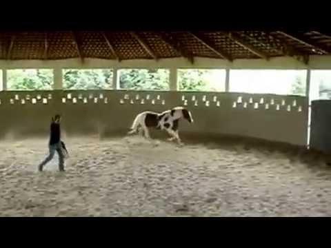 dominador de corpos COMPLETO E DUBLADO from YouTube · Duration:  1 hour 25 minutes 25 seconds