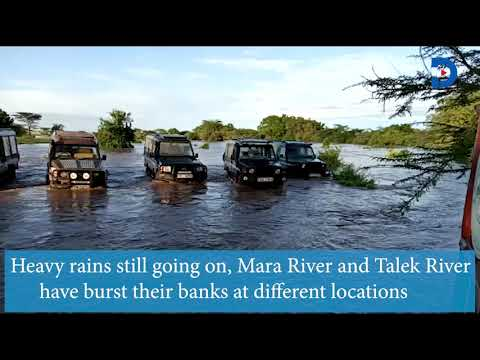 Mara Leisure camp and Ilkiliani camp submerged after heavy rains