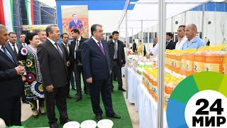 Рахмон открыл в Хатлонской области крупнейший маслобойный завод - МИР 24