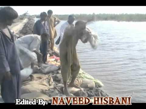 Tando Adam Flood Report By Naveed Hisbani