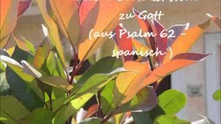 Meine Seele ist stille zu Gott (aus Psalm 62 - spanische Version) - Lied von Psalter & Harfe