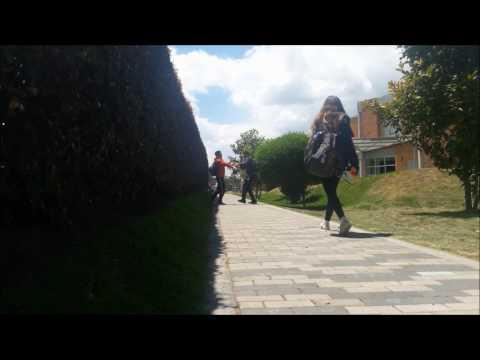 FLASH | VIDEO CLASS