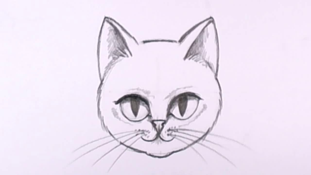 Line Drawing Of A Cat Face : How to draw a cat face in pencil drawing lesson mat