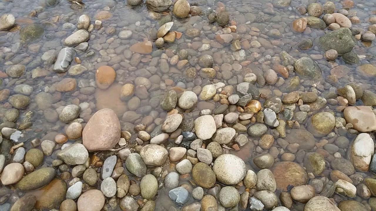 Đi tìm đá quý - Đi tìm đá cảnh phong thủy - Go find strange gems