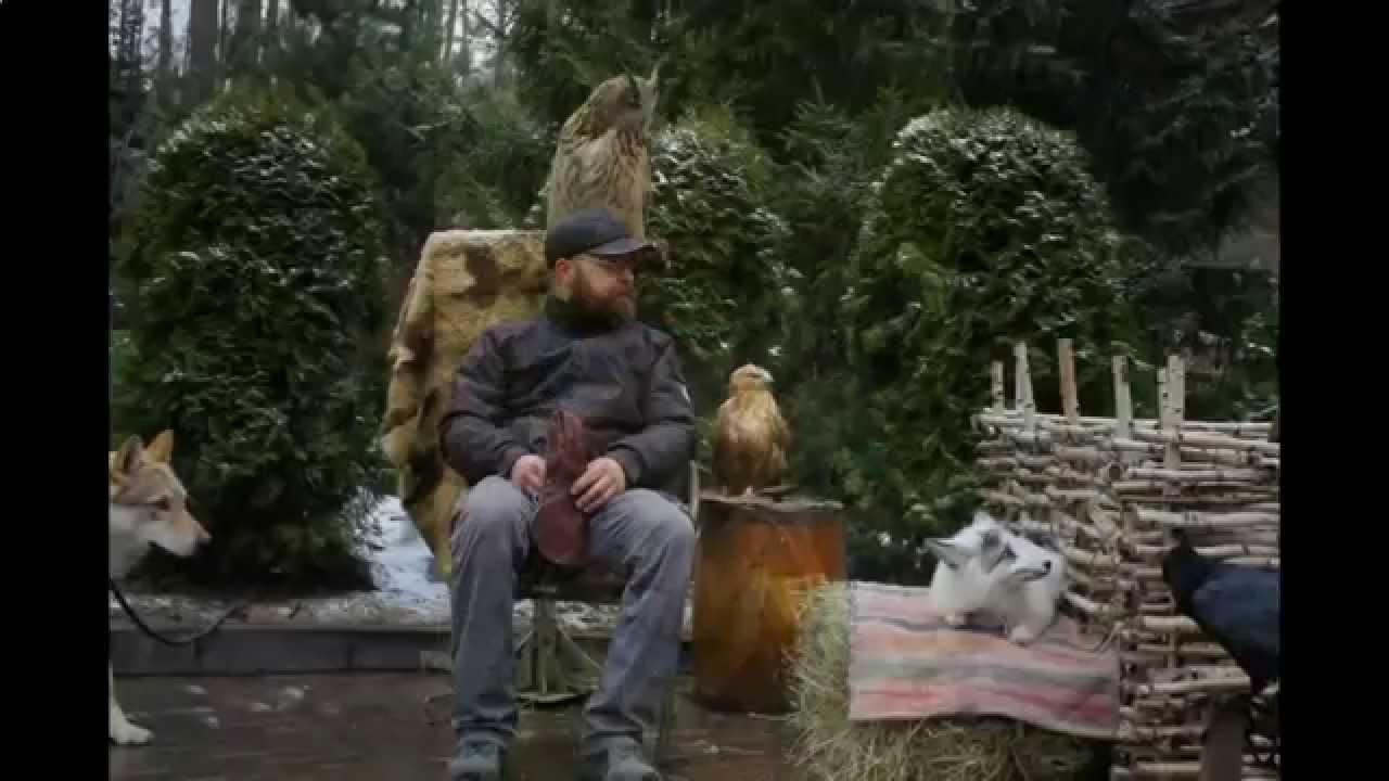 Вести фм Лисицы и еноты как домашние питомцы - YouTube
