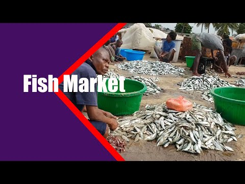 I Think is one of the craziest  Fish Market in Luanda Angola