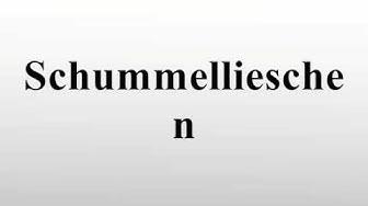 Schummellieschen