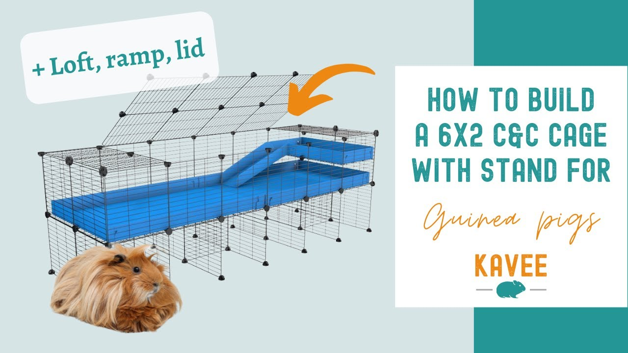 Download How to build a 6x2 C&C cage for Guinea Pigs with Stand, Ramp, Loft, Lid