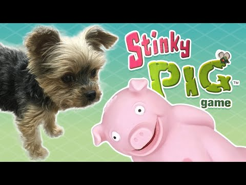 STINKY PIG GAME w/ RUBY! - Lets Get Weird