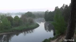 Рассвет туман на реке лес птицы поют звуки природы музыка для сна релакс медитация