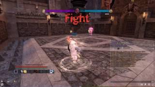 Vindictus PVP Arena Fiona vs Karok 2