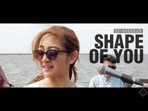 Ed Sheeran - Shape Of You (Natalie Zenn Cover)