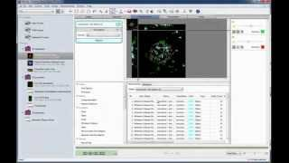 Creating a Measurement Protocol in Volocity 3D Image Analysis Software
