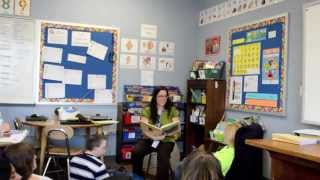 Elementary Lesson Plan: Butterfly Introduction