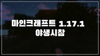 마인크래프트 1.17.1 반야생 시참!  | 24시간 서버 O