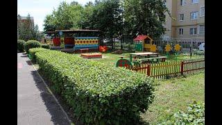 Детские сады и школы: озеленение
