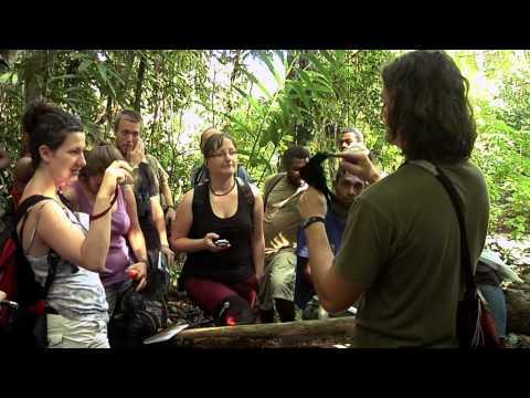 Dobrodružství tropické ekologie (The adventure of tropical ecology) Papua New Guinea