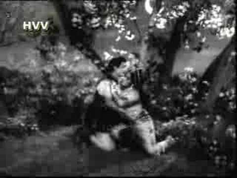nelavanka thongi shoosindi song in ntr rajakotarahasyam