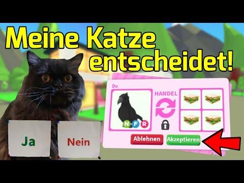 Meine Katze entscheidet ob ich die Trades annehmen soll! *40K Special* (Adopt Me Deutsch/LivzHD)