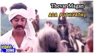Ilayaraja Tamil Hits | Ada Puthiyathu Song | Sivaji Ganesan | Kamal Haasan | தேவர் மகன்
